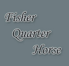 Fisher Quarter Horse